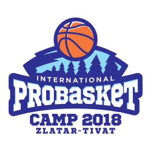 Probasket-camp